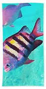 Sargeant Fish Hand Towel