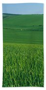 Scenic View Of A Field, South Downs Bath Towel