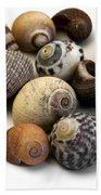 Sea Shells Bath Towel