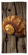 Sea Snail Shell On Old Wood Hand Towel
