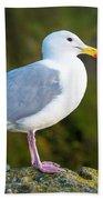 Seagull Heceta Head - Oregon Bath Towel