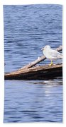 Seagull On Driftwood Bath Towel