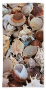 Seashells - Vertical Bath Towel
