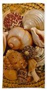 Seashells Bath Towel