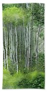 Seasons Of The Aspen Bath Towel