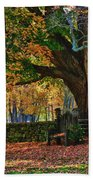 Seated Under The Fall Colors Bath Towel