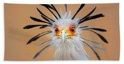 Secretary Bird Portrait Close-up Head Shot Bath Towel