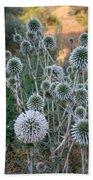 Seed Head Of Leek Flower Allium Sphaerocephalon Bath Towel