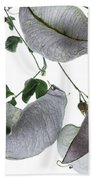 Seed Pods Bath Towel