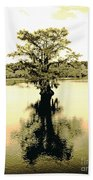 Sepia Cypress Chicot Sp Louisiana Bath Towel
