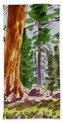Sequoia Park - California Sketchbook Project  Bath Towel
