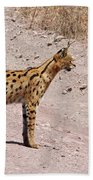 Serval Cat Hand Towel