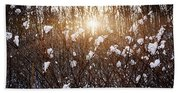 Setting Sun In Winter Forest Hand Towel