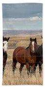 Seven Horses On The Range Pan Bath Towel