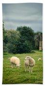Sheep Grazing By Castle Bath Towel