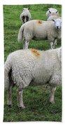 Sheep On Parade Bath Towel