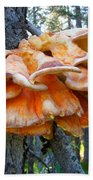 Shelf Fungus In Carl E. Wynn Nature Center In Homer-ak   Bath Towel