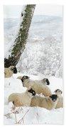 Sheltering Flock Hand Towel by John Kelly
