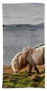 Shetland Pony At Shore  Shetland Bath Towel
