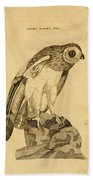 Short-eared Owl Bath Towel