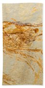 Shrimp Fossil Bath Towel