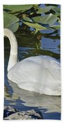 Shy Swan Hand Towel
