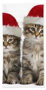 Siberian Kittens In Hats Bath Towel