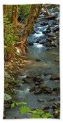 Silky Stream In Rain Forest Landscape Art Prints Bath Towel