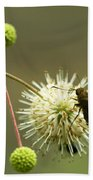 Silver-spotted Skipper On Buttonbush Flower Bath Towel