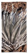 Silversword Leaves Bath Towel