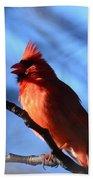 Singing Cardinal Bath Towel