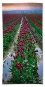 Skagit Valley Tulips Bath Towel