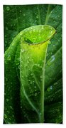 Skunk Cabbage Bath Towel