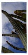 Sky Cactus Bath Towel