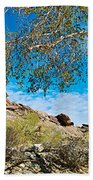 Slanted Rocks And Sycamore Tree  In Andreas Canyon In Indian Canyons-ca Bath Towel
