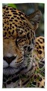 Sleeping Jaguar Bath Towel