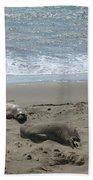 Sleeping On The Beach Bath Towel
