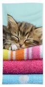 Sleepy Kitten Bath Towel
