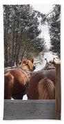 Sleigh Ride Dwn A Snowy Lane Bath Towel