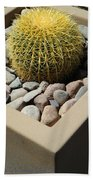 Small Barrel Cactus In Planter Bath Towel