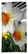 Small-cupped Daffodil Named Barrett Browning Bath Towel