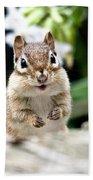 Smiling Chipmunk Bath Towel