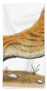 Smilodon Saber-toothed Tiger Bath Towel