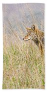 Smoky Mountains Coyote Bath Towel