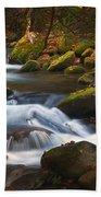 Smoky Mtn Autumn Stream Bath Towel