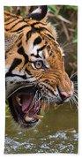 Snarling Tiger Bath Towel