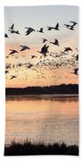 Snow Geese At Chincoteague Last Flight Of The Day Bath Towel