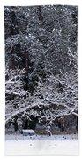 Snow In The Valley Bath Towel