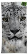 Snow Leopard 5 Bath Towel