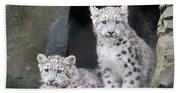 Snow Leopard Cubs Bath Towel